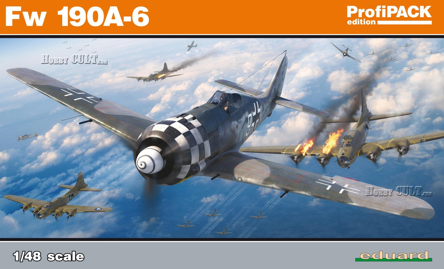 1:48 Fw 190A-6  (for Profipack kit)