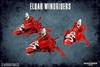 Eldar Windriders (99120104038)